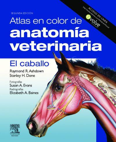Atlas en color de anatomía veterinaria. El caballo
