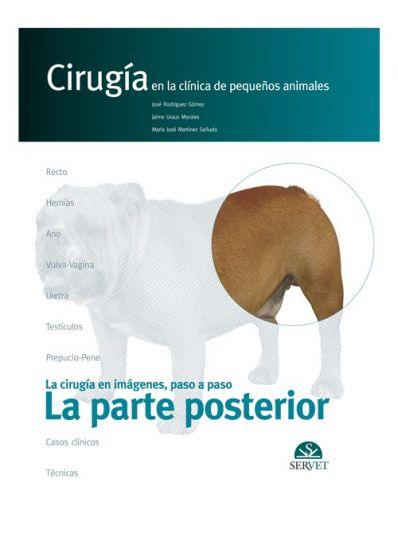 La parte posterior. Cirugía en la clínica de pequeños animales